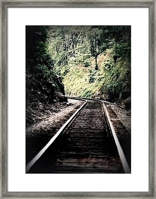 Hegia Burrow Railroad Tracks  Framed Print