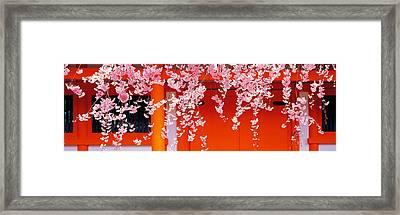 Heian-jingu Kyoto Japan Framed Print by Panoramic Images