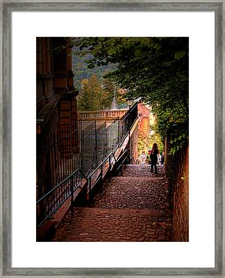 Framed Print featuring the photograph Heidelberg Stairway by Jim Hill
