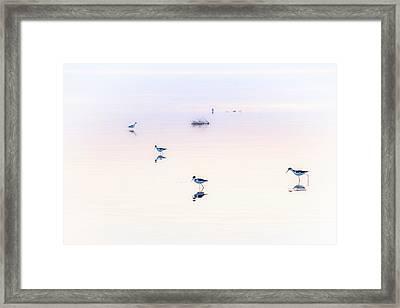 Heiwa I Framed Print