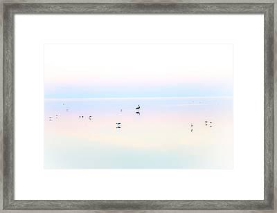 Heiwa II Framed Print