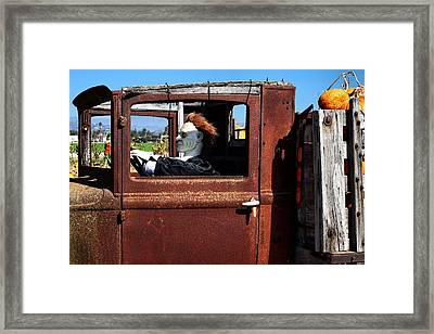 Framed Print featuring the photograph Hell Bent To Market by Michael Gordon