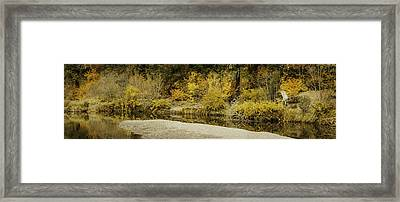 Hello Autumn Panorama Framed Print by Diane Schuster