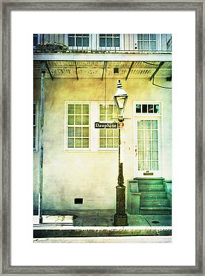 Framed Print featuring the photograph Hello Dauphine by Heather Green