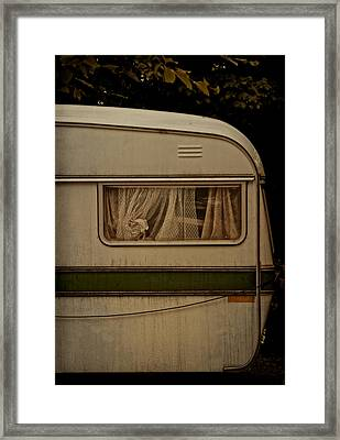 Hello In There Hello Framed Print