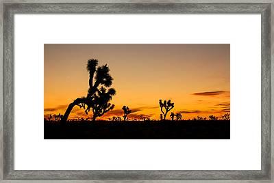 Hello Joshua Tree Framed Print