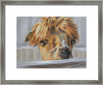 Hello Framed Print by Lori Brackett
