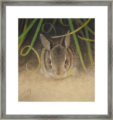 Hello Framed Print by Ben Kotyuk