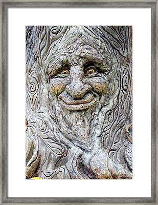 Hello Tree Framed Print