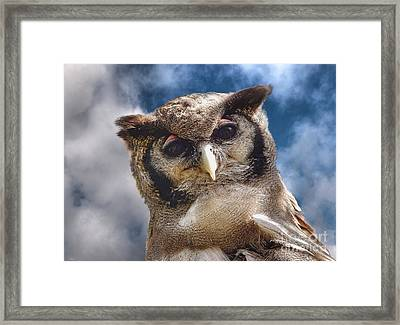 Hello You Down There Framed Print by Wobblymol Davis