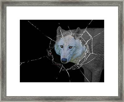 Hellouu . . . Little Red Riding Hood Framed Print by Joachim G Pinkawa