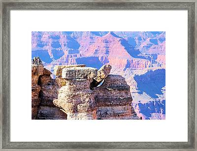 Help I've Fallen And I Can't Get Up Framed Print by Marv Russell