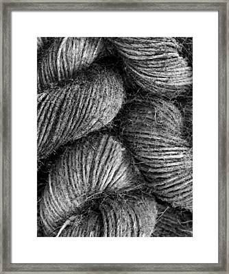 Hemp Curls Framed Print