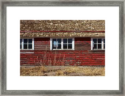 Hen House Windows Framed Print by Nikolyn McDonald
