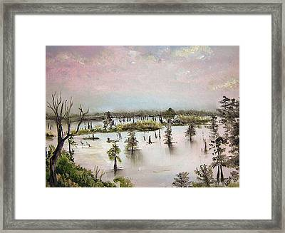 Henderson Swamp Framed Print