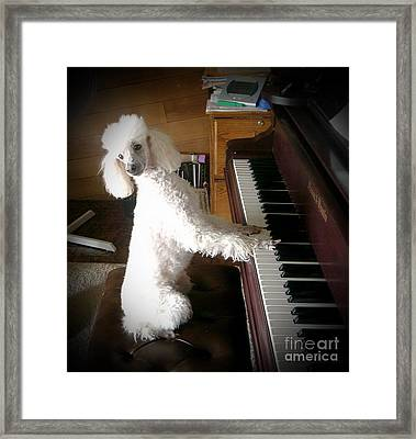 Henri Plays The Piano Framed Print