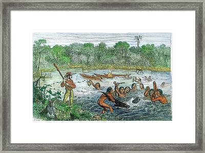Henry Walter Bates Framed Print by Universal History Archive/uig