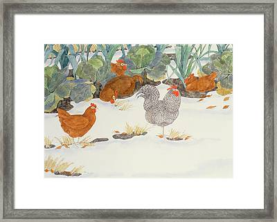 Hens In The Vegetable Patch Framed Print by Linda Benton
