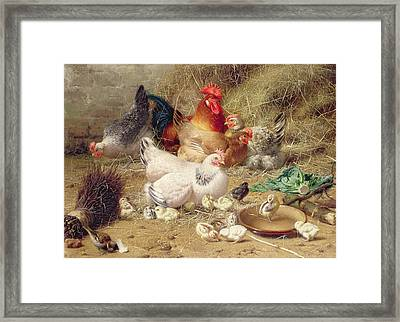 Hens Roosting With Their Chickens Framed Print by Eugene Remy Maes