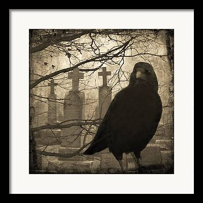 Ravens In Graveyard Framed Prints