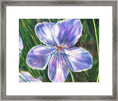 Her Name Was Violet Framed Print by Shana Rowe Jackson
