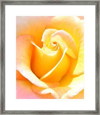 Her Sweet Perfume Framed Print