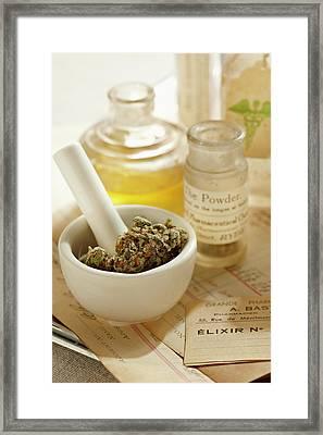 Herbal Medicine Framed Print by Lew Robertson