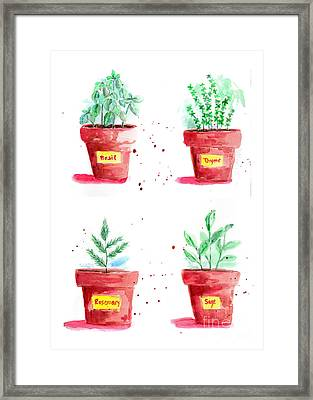 Herbal Plants Basil Thyme Sage Rosemary Framed Print by Patricia Awapara