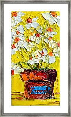 Herbal Tea Camomile Plant Framed Print by Patricia Awapara
