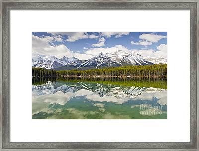 Herbert Lake Framed Print by Dee Cresswell