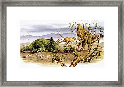 Herbivorous Dinosaurs Framed Print