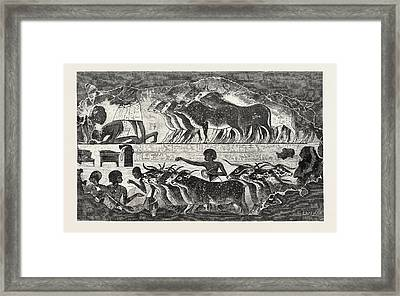 Herd Of Cattle Brought Before Their Owner Framed Print