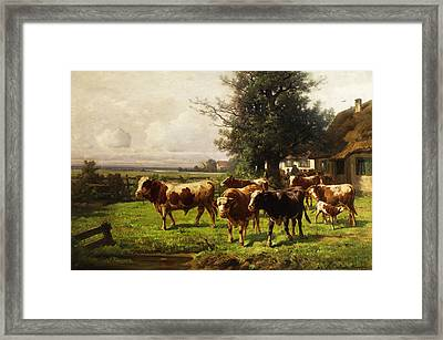 Herd Of Cows Framed Print by Adolf bei Dachau