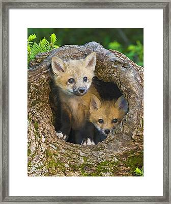 Here Comes Trouble Framed Print by Jack Nevitt