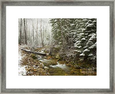 Here Comes Winter Framed Print by Idaho Scenic Images Linda Lantzy