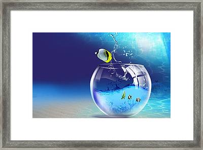 Here Fishy Fishy Framed Print by Gianfranco Weiss