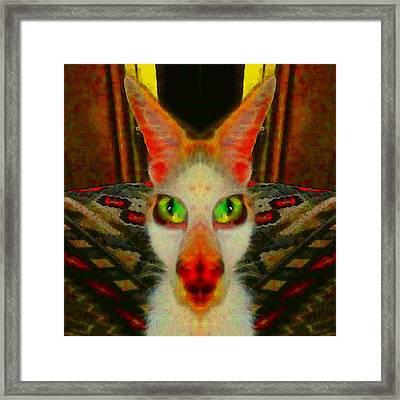 Here Kitty Kitty 2 Framed Print