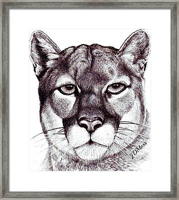 Here Kitty Kitty Framed Print by Janet Moss