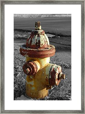 Framed Print featuring the photograph Here When You Need Me by Lena Wilhite