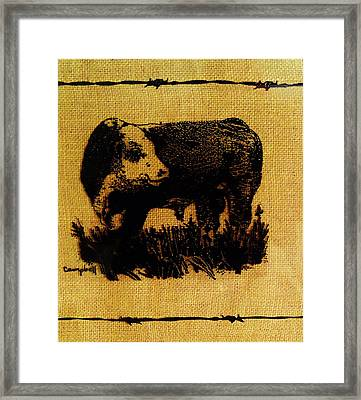 Polled Hereford Bull 12 Framed Print by Larry Campbell