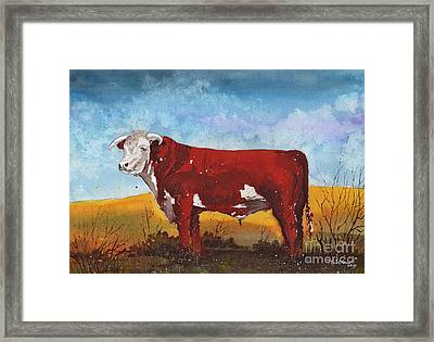 Hereford Bull Framed Print by Tim Oliver