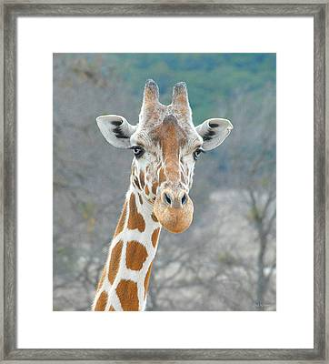 Framed Print featuring the photograph Here's Lookin' At You by Dyle   Warren