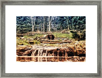 Here's Looking At You Kid Framed Print by Kelly Reber