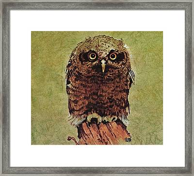 Here's Looking At You Framed Print by Richard Hinger