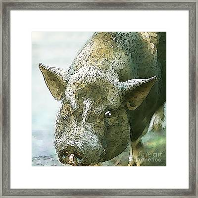 Here's Woody Framed Print by Artist and Photographer Laura Wrede
