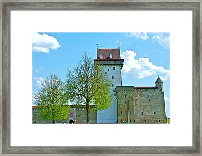 Hermann Castle And Ivangorod Fortress In Narva-estonia Framed Print by Ruth Hager