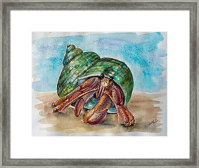 Hermit Crab 4 Framed Print