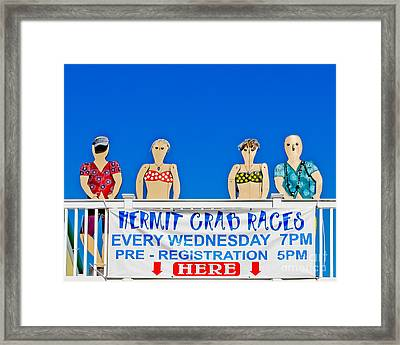 Hermit Crab Race Framed Print