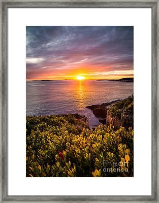 Hermit Island Sunset Framed Print by Benjamin Williamson