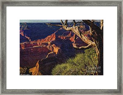 Hermit Rest Grand Canyon National Park Framed Print by Bob and Nadine Johnston